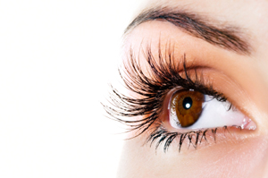 faq-lashes